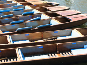 WebSanity Web Design's photo of Punts in Cambridge